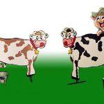 koeien melken gezelschapsspel